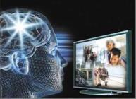 Beyin Dalgalarının Gizemi beyindal10