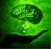 Beyin Dalgalarının Gizemi beyindal12