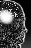 Beyin Dalgalarının Gizemi beyindal14